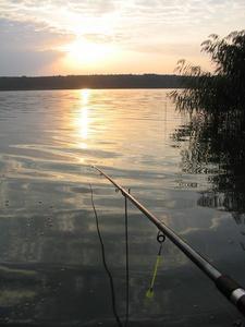 Jezioro Zioło (Rogowo)