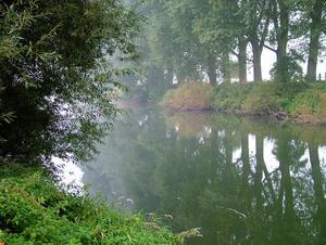 Mały odcinek rzeki Lippy