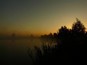 Wczesnym rankiem